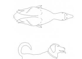 各式各样的动物平立面CAD图块