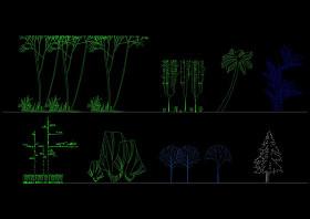 园林景观建筑植物绿化cad立面图库