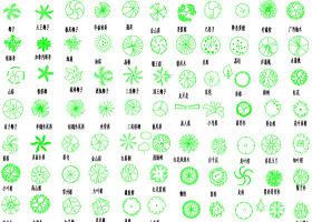 原創園林植物圖例