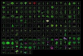 CAD植物立面圖例大全