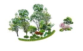 精品免费植物标段SU模型下载 精品免费植物标段SU模型下载