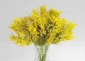 现代花瓶插花3D模型下载 现代花瓶插花3D模型下载