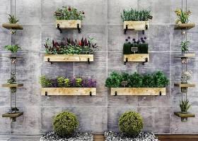 现代墙面绿植盆栽组合3D模型下载 现代墙面绿植盆栽组合3D模型下载
