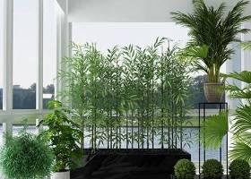现代竹子绿植盆景组合3D模型下载 现代竹子绿植盆景组合3D模型下载