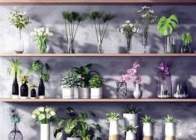 现代绿植花卉花瓶组合 现代绿植 花瓶 盆栽 花卉 花 玻璃花瓶 装饰 盆景3D模型下载 现代绿植花卉花瓶组合 现代绿植 花瓶 盆栽 花卉 花 玻璃花瓶 装饰 盆景3D模型下载