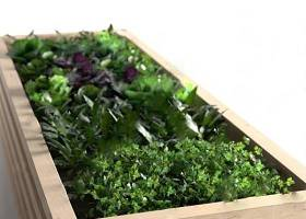 戶外花壇 3D模型 下載 戶外花壇 3D模型 下載